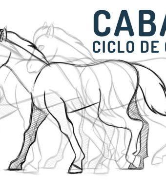 Como animar un ciclo de caminata de un caballo