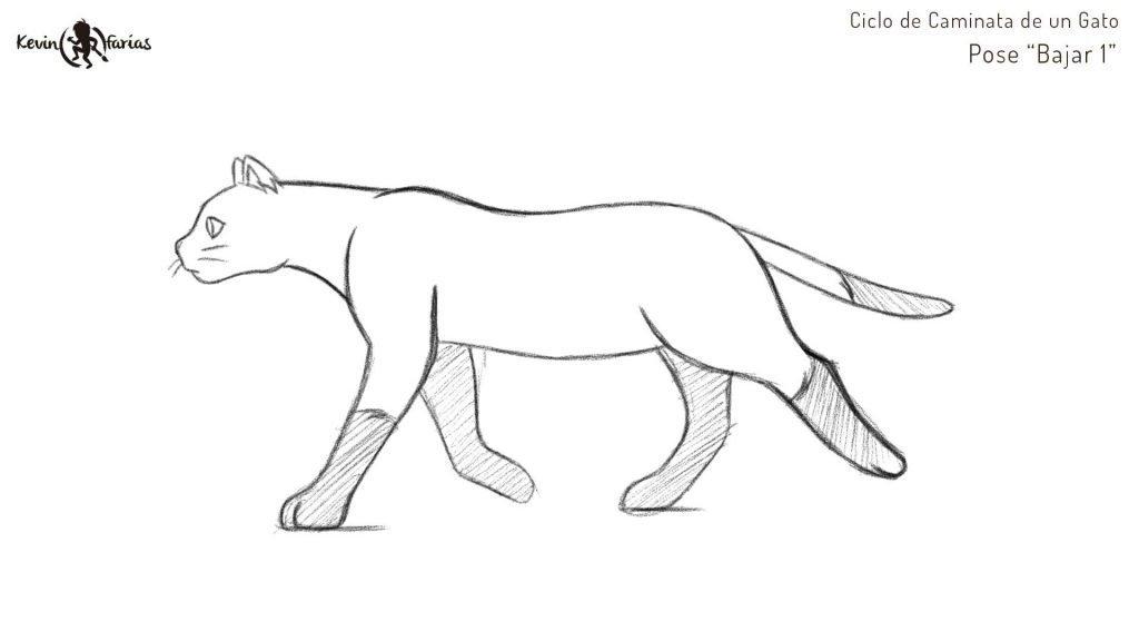 Gato - Pose Bajar 1