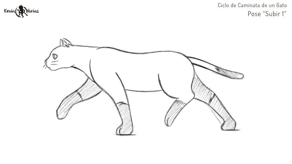 Gato - Pose Subir 1