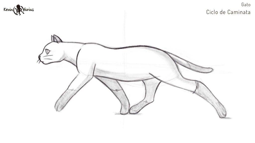 Diseño del Gato - Ciclo de Caminata